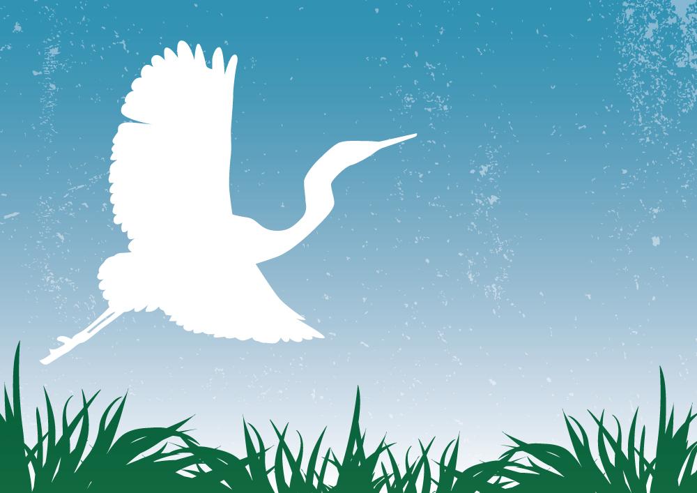 Matariki-Calendar-2012-Illustration_Kotuku